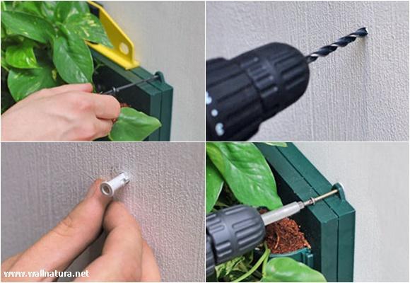 Imagen Instalación de un jardín vert