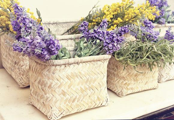 Las flores, el tesoro de la primavera