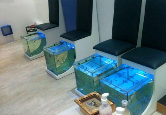 Pedicuras con peces: los riesgos que debes conocer